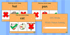 CVC Words Which Picture Activity PowerPoint