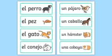 Pets Word Cards - Spanish