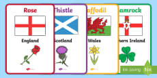 Flowers of Britain and Ireland Display Posters With Flags
