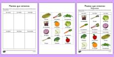 Ficha de actividad Las plantas que comemos