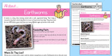 Earthworm Reading Comprehension Pack