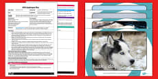Journey to the North Pole EYFS Adult Input Plan and Resource Pack