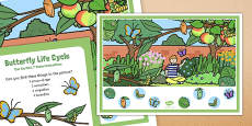 Butterfly Life Cycle Can You Find Poster and Prompt Card Pack
