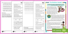 The Rainbow Serpent Differentiated Reading Comprehension Activity -