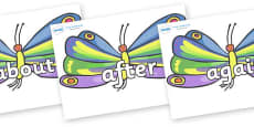 KS1 Keywords on Butterflies to Support Teaching on The Very Hungry Caterpillar