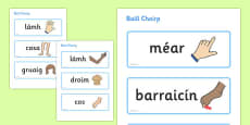 Parts of the Body Topic Word Cards Gaeilge