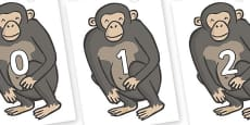 Numbers 0-31 on Chimps