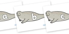 Phase 2 Phonemes on Seals