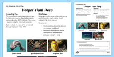 Deeper Than Deep Activity Sheet Activity Sheet