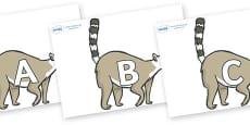A-Z Alphabet on Lemurs