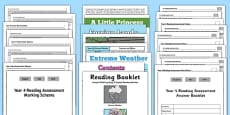 Year 4 Reading Assessment Term 3