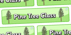 Pine Tree Themed Classroom Display Banner