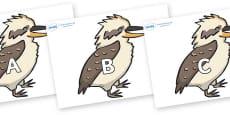 A-Z Alphabet on Kookaburras