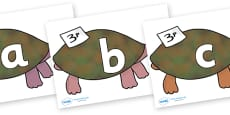 Phoneme Set on Turtle to Support Teaching on The Great Pet Sale