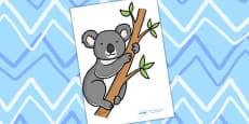 Editable Koala