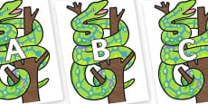 A-Z Alphabet on Boa Constrictor to Support Teaching on The Bad Tempered Ladybird