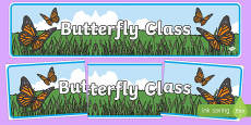 Butterfly Themed Classroom Display Banner