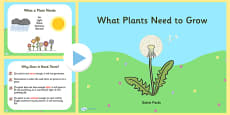 What Plants Need to Grow PowerPoint