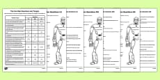 The Iron Man Differentiated Reading Questions Activity