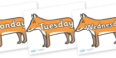 Days of the Week on Foxes