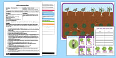 EYFS Hide and Seek Turnip Adult Input Plan and Resource Pack to Support Teaching on The Enormous Turnip