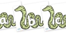 Phoneme Set on Snakes