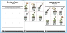 Activity Sheet Growing a Flower Arabic Translation