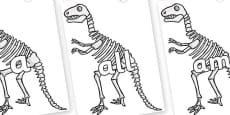Foundation Stage 2 Keywords on Dinosaur Skeletons