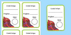 Shoe Shop Role Play Shoe Box Labels Gaeilge