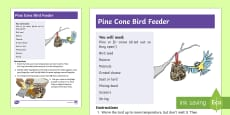 KS1 Make a Pine Cone Bird Feeder Craft Instructions