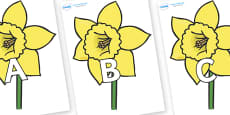 A-Z Alphabet on Daffodils