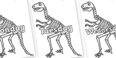 Days of the Week on Dinosaur Skeletons