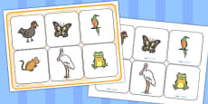 African Hen Story Matching Cards and Board