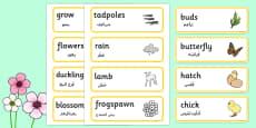 Spring Word Cards Arabic Translation