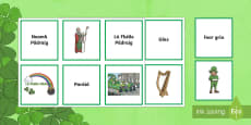 St. Patrick's Day/Lá le Pádraig Matching Cards Gaeilge
