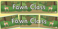 Fawn Class Display Banner