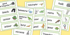 Dinosaur Museum Topic Word Labels Romanian