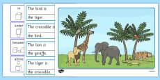 Wild Animal Preposition Scene