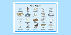 Polar Regions Word Mat
