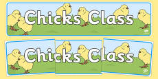 Chicks Themed Classroom Display Banner