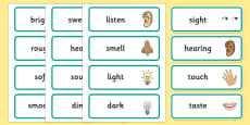 Senses Topic Word Cards