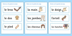 Parts of the Body Topic Words French