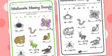 Minibeasts Cute Missing Sounds Activity Sheet - Australia
