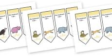 Safari Bookmarks