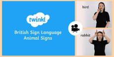 Animal Signs in British Sign Language (BSL) Video Clip
