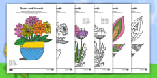 Plants and Growth Themed Mindfulness 2, 5 and 10 Times Tables Colour By Numbers