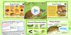 PlanIt - Science Year 6 - Living Things and Their Habitats Lesson 3: Curious Creatures Lesson Pack