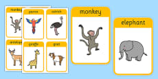 African Surprise Animal Flashcards