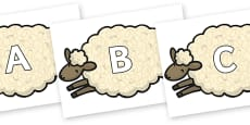 A-Z Alphabet on Sheep