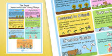 Characteristics of Living Things Display Poster